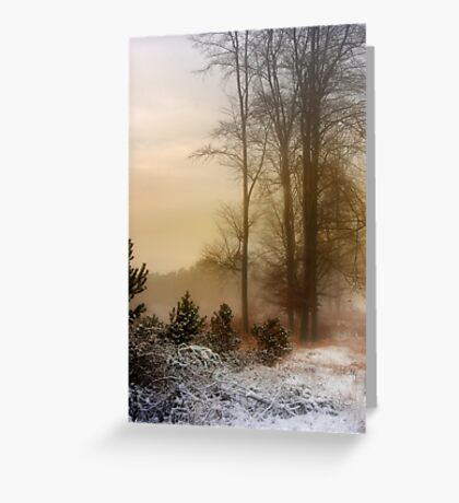 Christmas Eve in the Snow Greeting Card