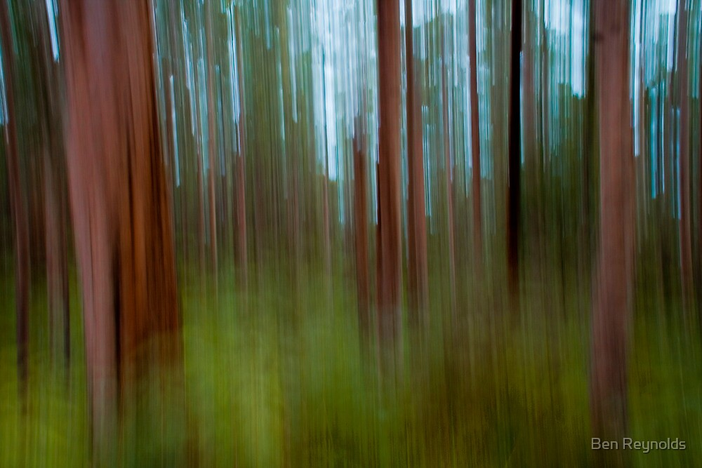 High Speed Trees by Ben Reynolds