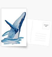 Humpback Whale Breach Postcards