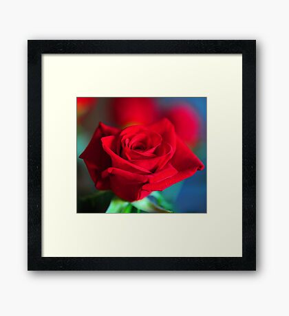 The Color of my Love Framed Print