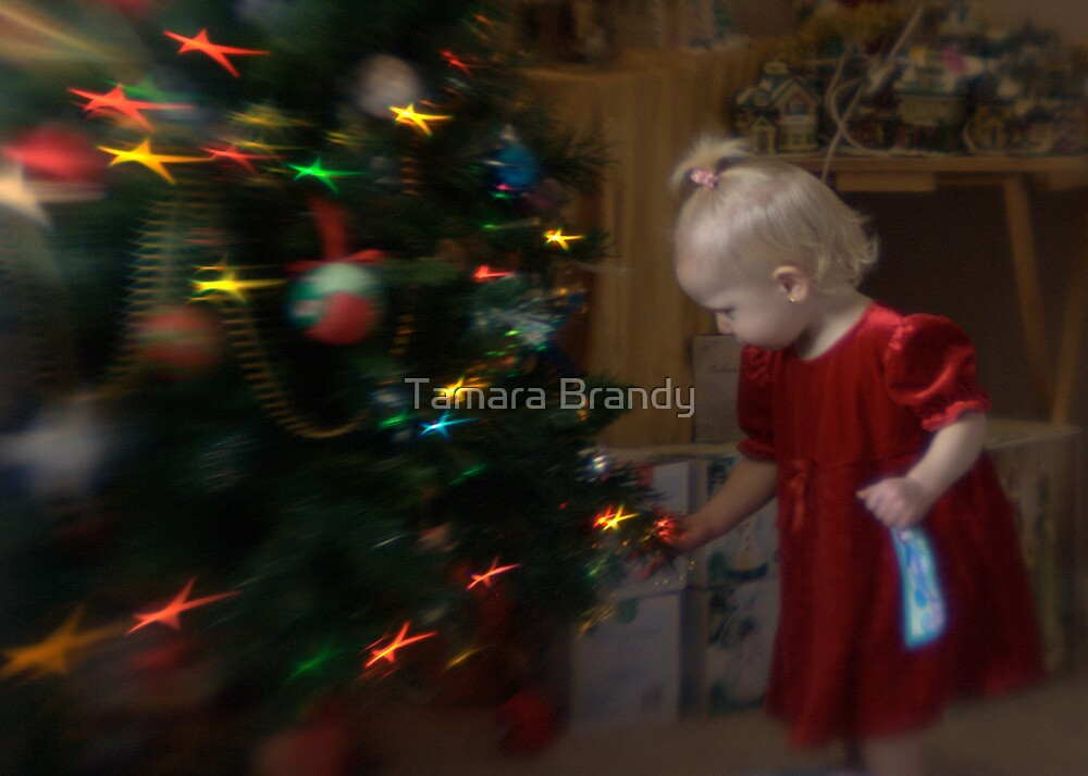 Christmas 2009 by Tamara Brandy