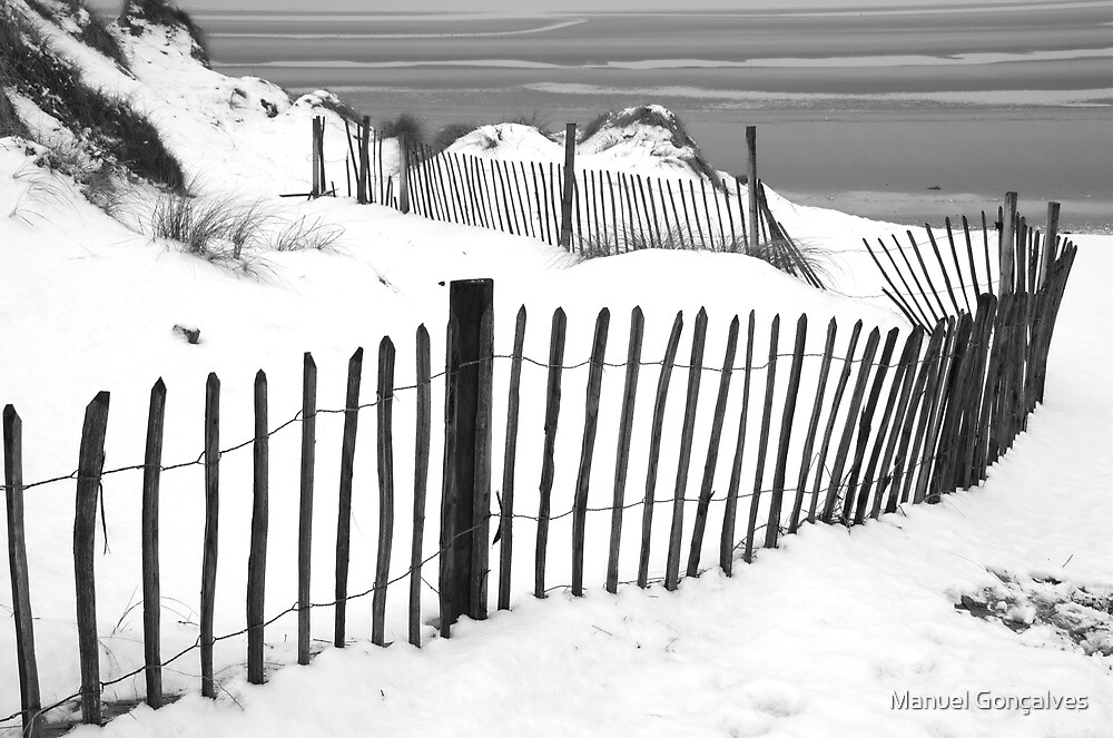 Snow at Formby Dunes II by Manuel Gonçalves