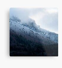 Première neige en Chartreuse Impression métallique