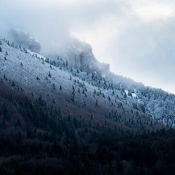 «Première neige en Chartreuse» par patricemestari