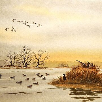 Duck Hunting For Pintails by billholkham