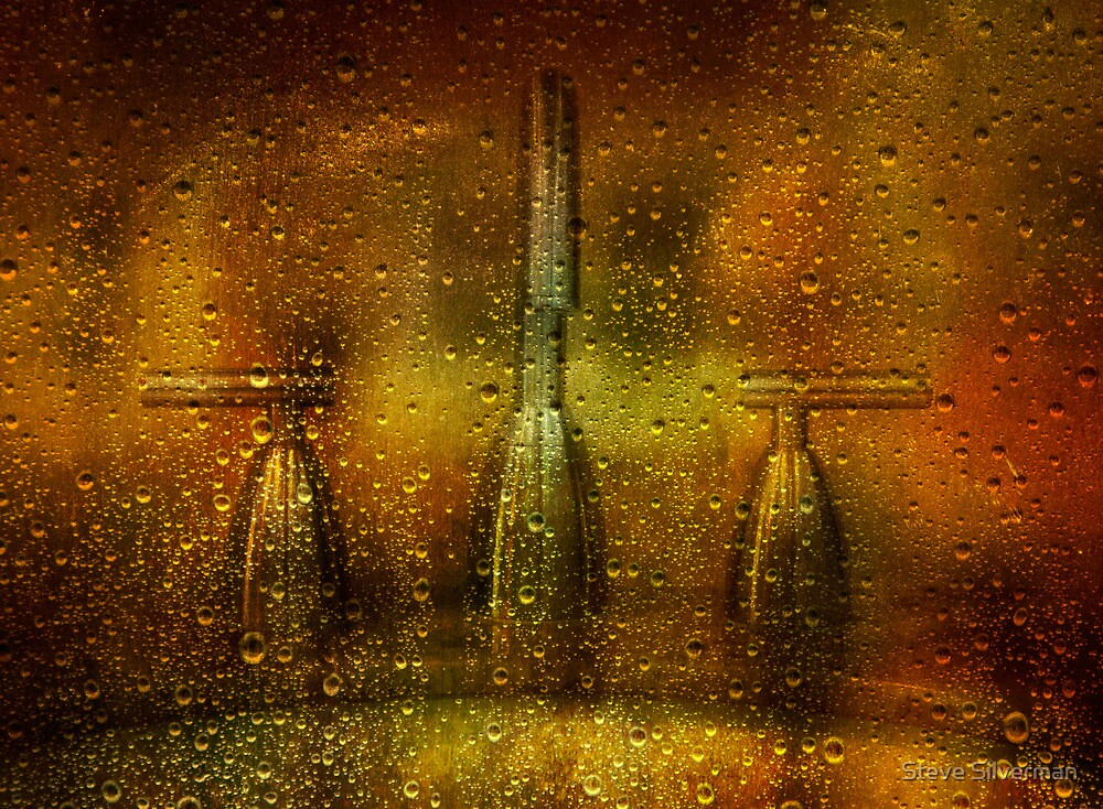 Stormy Weather by Steve Silverman