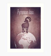Pyrenean ibex - extinct animals Art Print