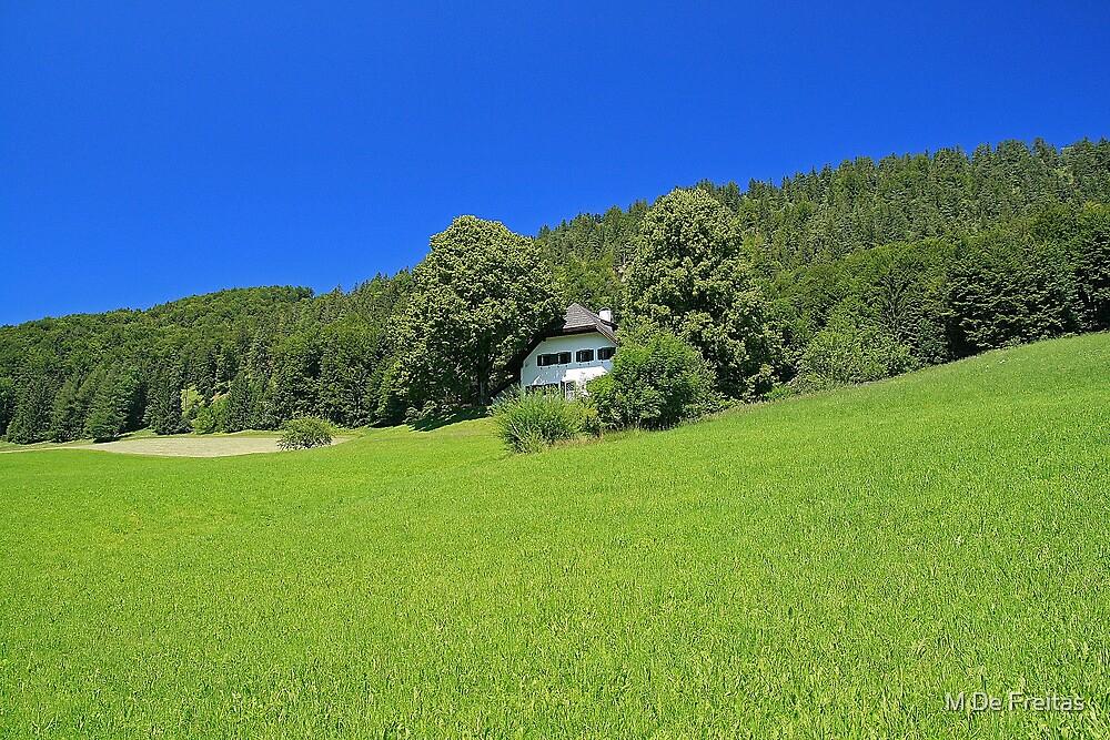 Fuschl Lake District by M De Freitas