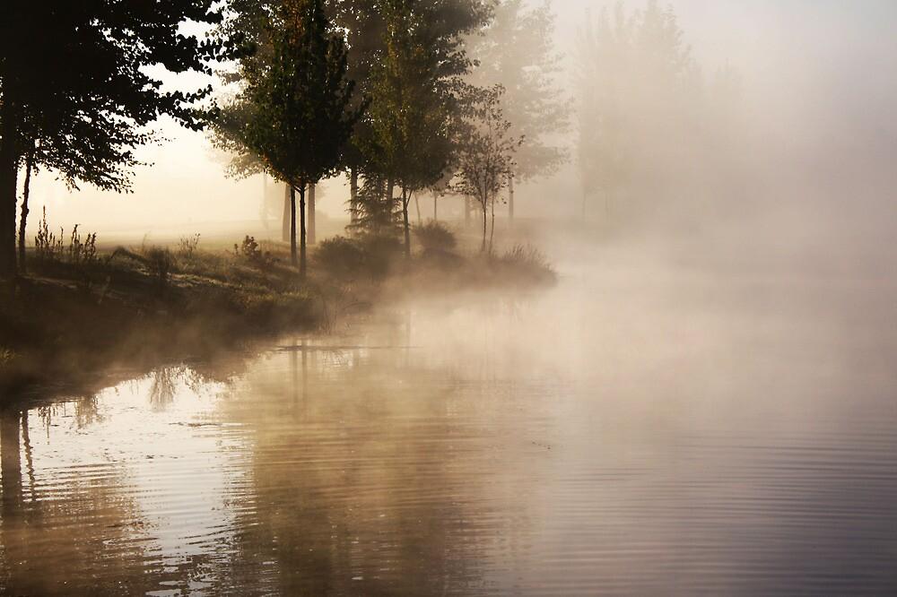 Fog on a Lake by Sharon Hagler