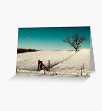 After effects from xmas snow storm. Greeting Card
