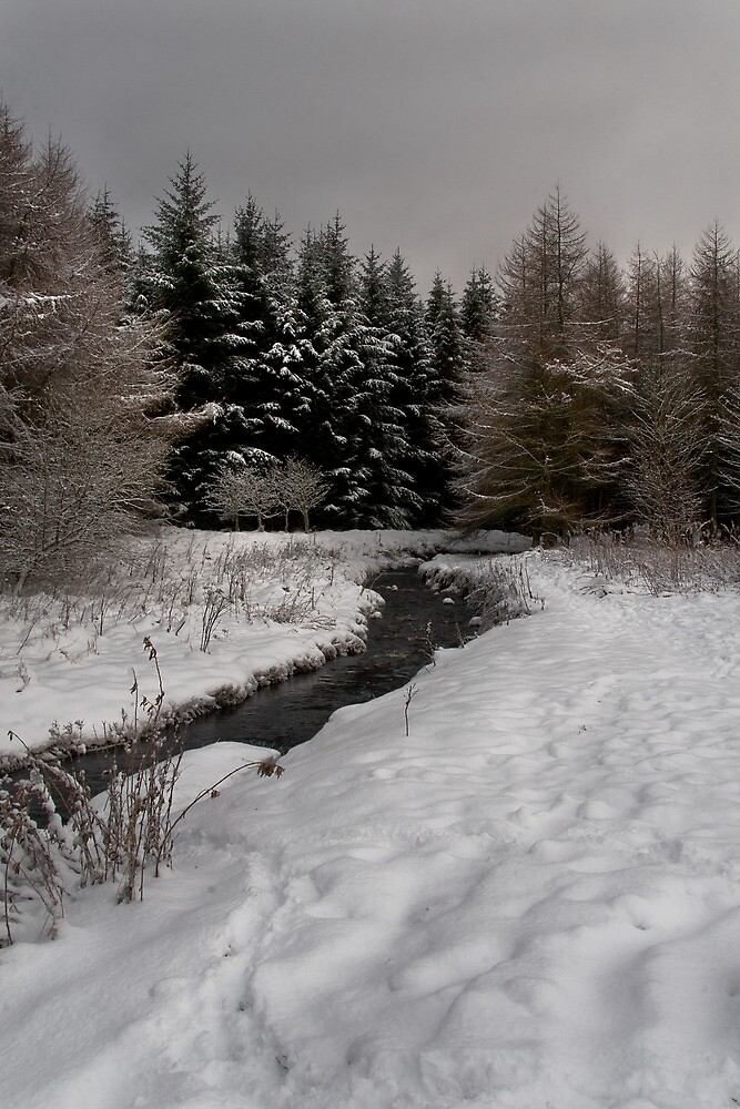 Winter Brook by Chris Clark