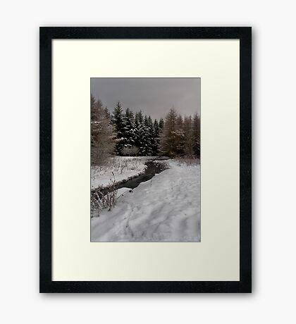 Winter Brook Framed Print
