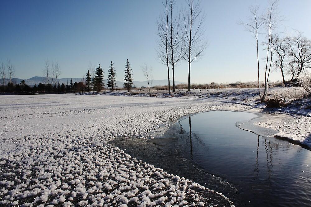 Snowflakes on a Lake ! by Sharon Hagler