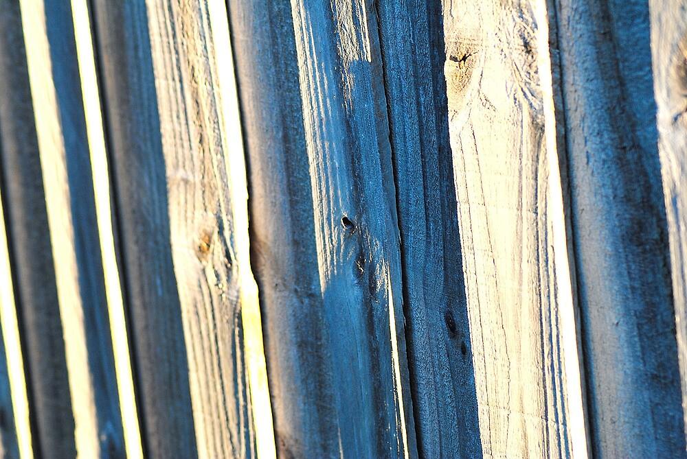 Hot Fence by Bas Van Uyen