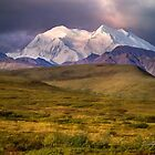 The Mountain - Denali National Park, Alaska by Kathy Weaver