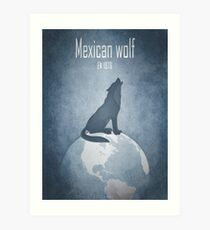 Mexican wolf - endangered animals Art Print