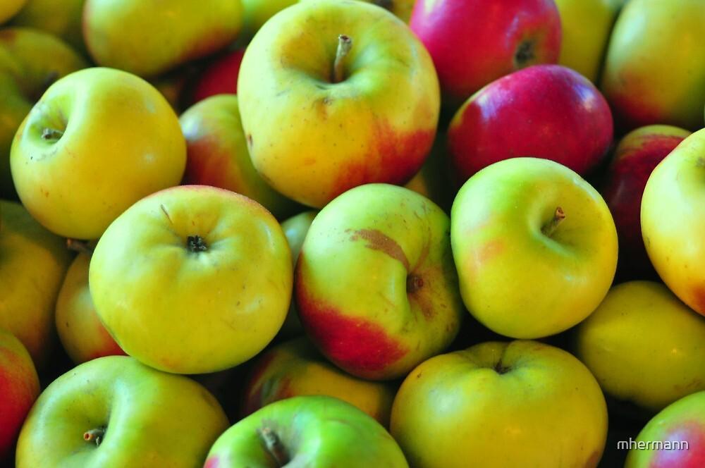 Abuncha Apples by mhermann