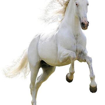 White horse by autrouvetout