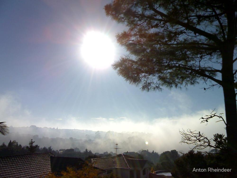 Sun burning off early morning mist by Anton Rheindeer