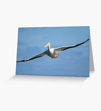 Eyes Wide Open Greeting Card