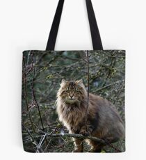 Maine Coon Tabby Cat Tote Bag