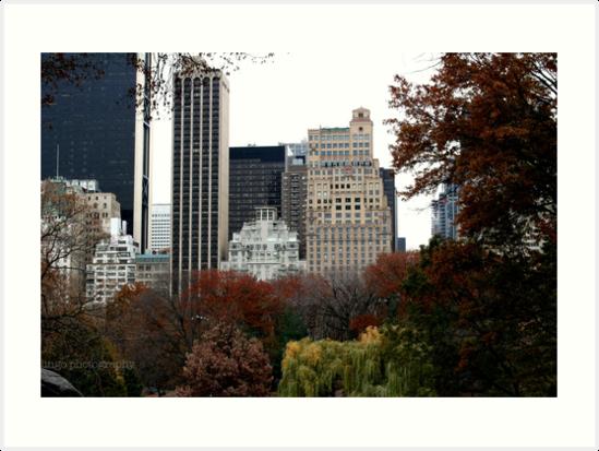 The Park by Kait Paige
