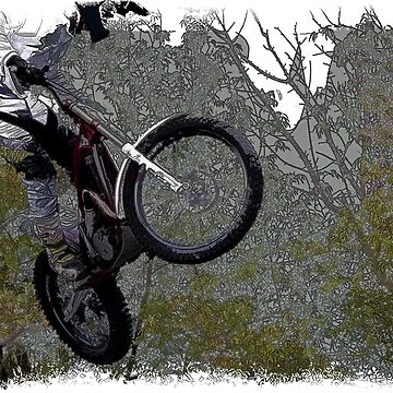 Off-roading - Motocross Racer by NaturePrints