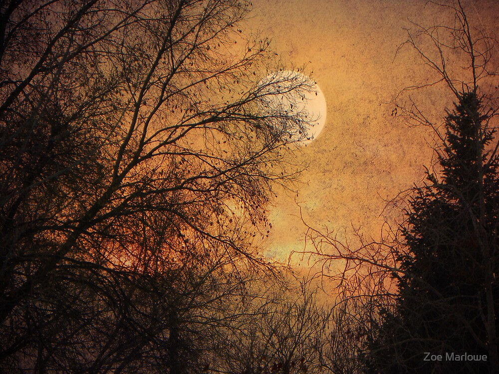 Gilded Sunset by Zoe Marlowe
