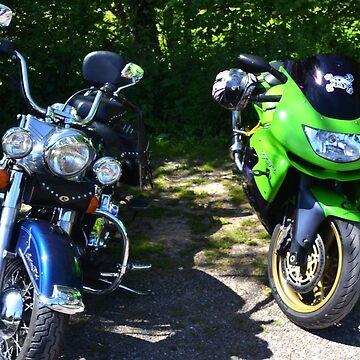 Harley and a Kawasaki MotorBikes by lynn45