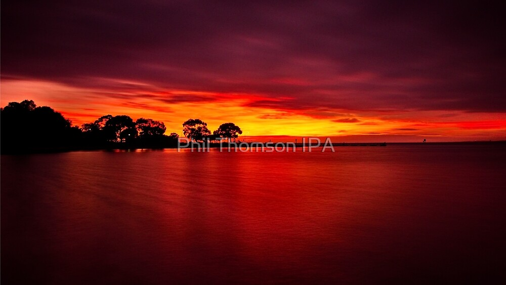 """""""The Blush Of Dawn"""" by Phil Thomson IPA"""