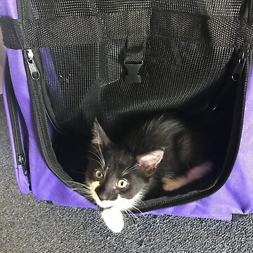 Nelson loves his backpack by TeAnne