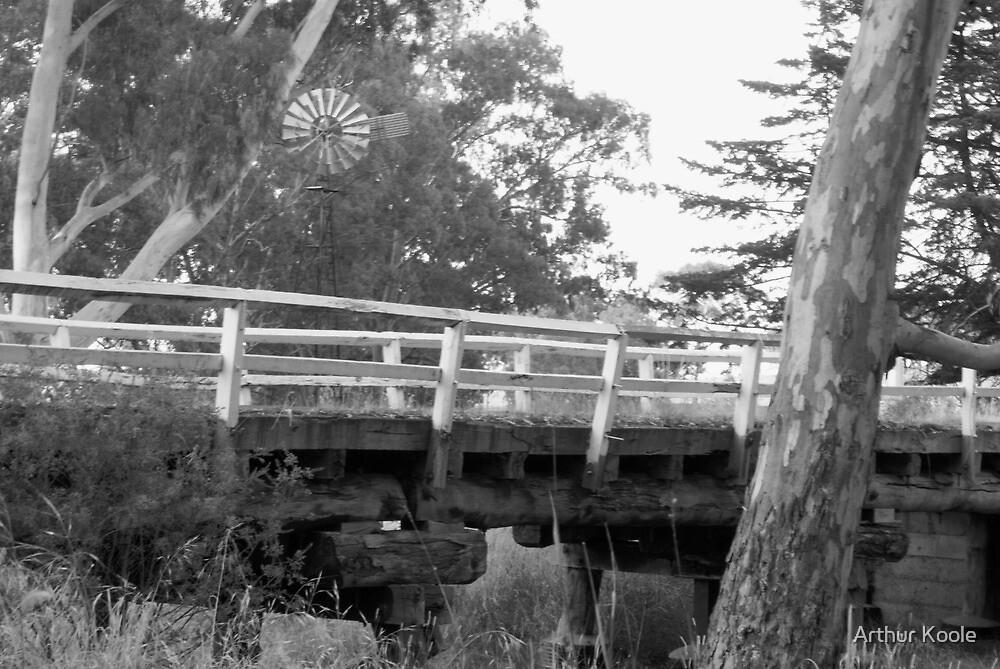 Timber Bridge by Arthur Koole