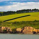 Southern Ireland's Greener Pastures by DARRIN ALDRIDGE