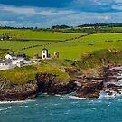 Ireland's Southern Coast by DARRIN ALDRIDGE