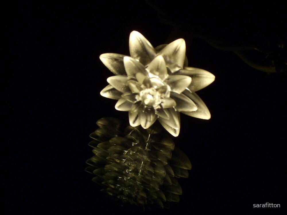 Flower of Light by sarafitton
