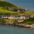 Southern Ireland Peninsula by DARRIN ALDRIDGE