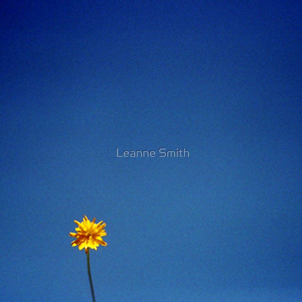 The sky by Leanne Smith