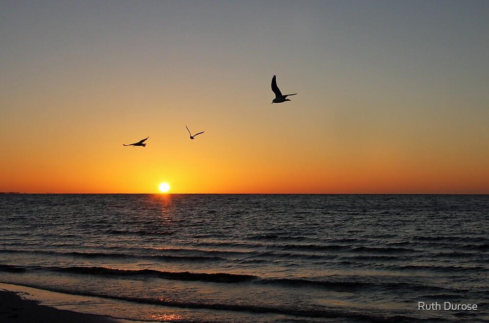 Sunset - Wyomi Beach, South Australia by Ruth Durose