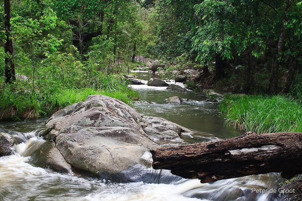 Cedar Creek-downstream by Peter de Groot