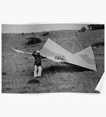 My WASP 229 B3 Hang Glider Poster