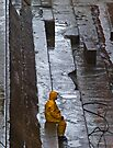 Yellow in the wet by awefaul