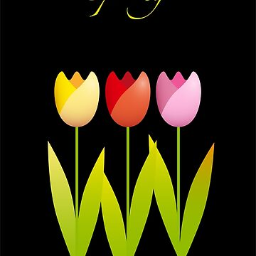 Three colorful tulips on a black background by MaxalTamor