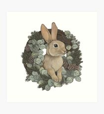 Winter Rabbit Art Print