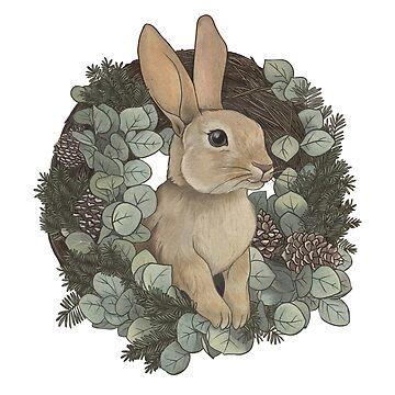 Conejo de invierno de lauragraves