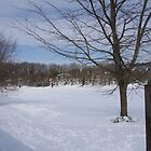 Snow And Sunshine In South Brent by lezvee