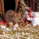 Winter mouse in a christmas house  by Simon-dell