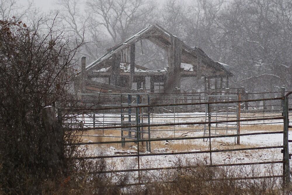 Winter on the Farm by TxGimGim