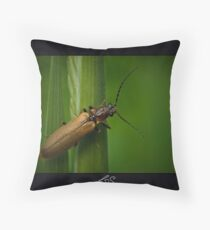 Soldier Beetle (Female) Throw Pillow