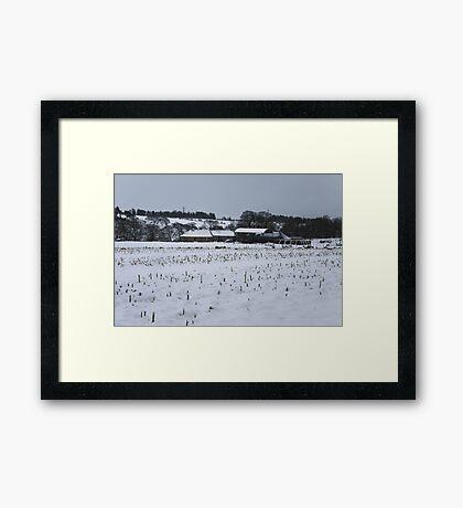 Winter Beauty III Framed Print