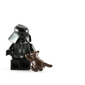 Darth Vader - Cat Lover by wrottenburg